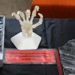 IMG_0115-150x150 Ausstellung des PMC Südpfalz Zeiskam 2017