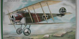 """Fokker D.II """"Grünzweigs planes"""" im Maßstab 1:32 von Special Hobby SH 32076"""
