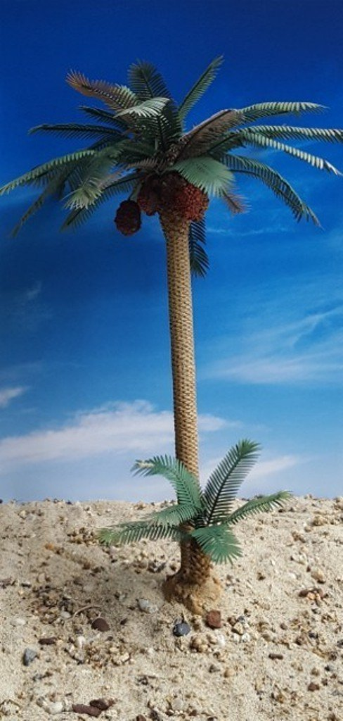 palm Date Palm Set 1:35 Reality in Scale (#PLM08)