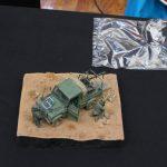 IMG_0078-150x150 12. Jahresausstellung des MBC Camouflage 25.08.2018