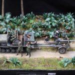 IMG_0351-150x150 12. Jahresausstellung des MBC Camouflage 25.08.2018