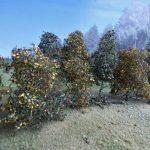 MiniNatur-300-23-Bäume-145-9-150x150 Filigranbüsche Frühherbst für den Maßstab 1:48 von MiniNatur