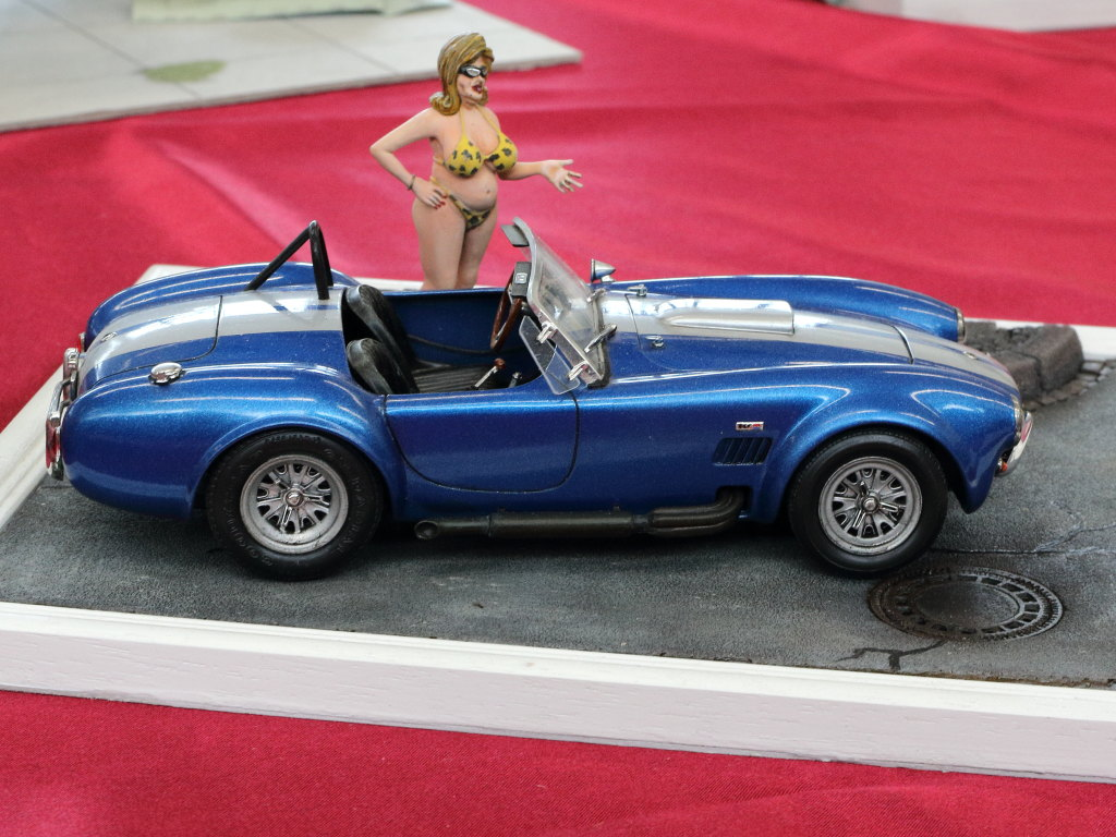 IMG_0043 31. Modellbauausstellung PMC Südpfalz 07./08.03.2020 in Zeiskam