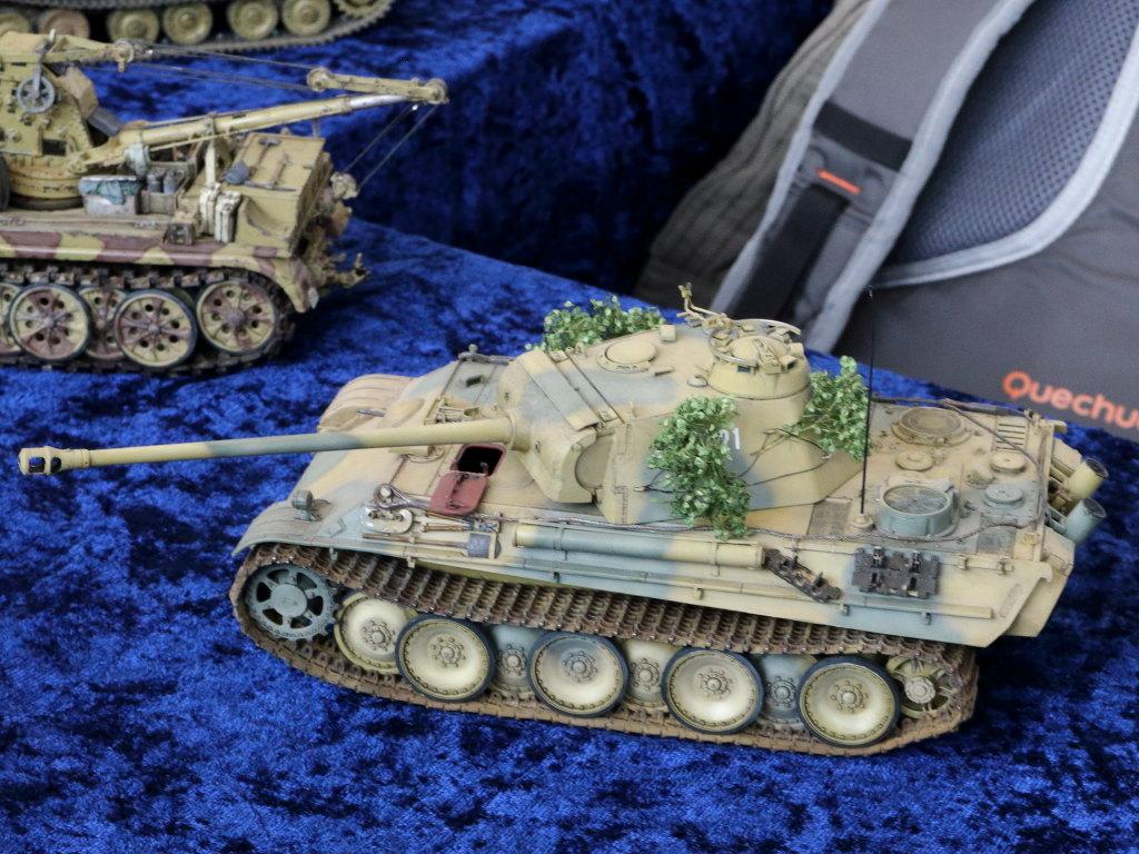 IMG_0189 31. Modellbauausstellung PMC Südpfalz 07./08.03.2020 in Zeiskam