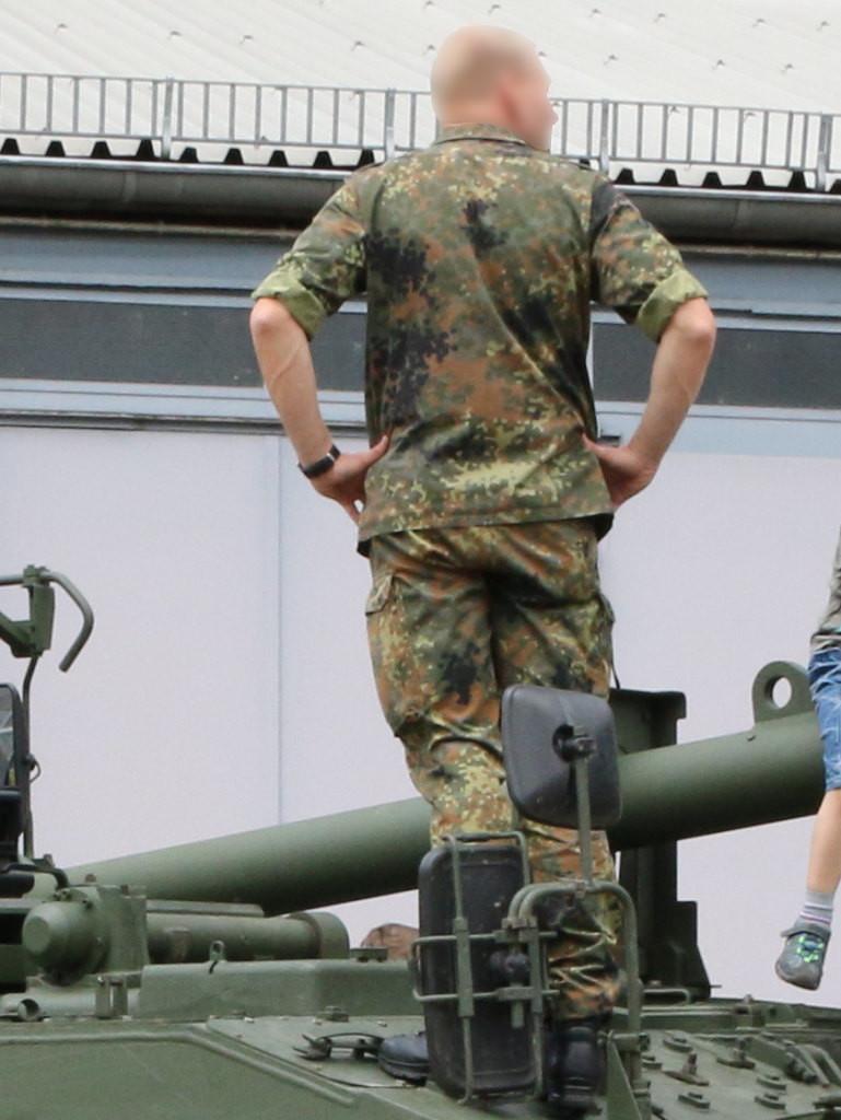1 Bundeswehr Flecktarn Texture Decals 1:35 MAIM (#MAIM35621)