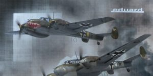 """Adlertag"" Limited Edition Bf-110 von Eduard in 1:48 #11145"