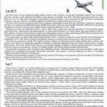 EDuard-1189-La-5-La-7-Combo-Bauanleitung-150x150 La-5FN und La-7 in 1:48 von Eduard #1189